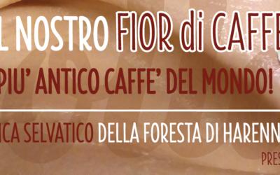 Lolla usa solo Il Caffè della Foresta di Harenna, presidio Slow Food.